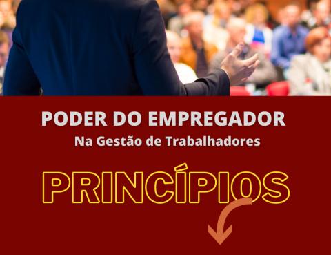 Princípios Poder Empregador